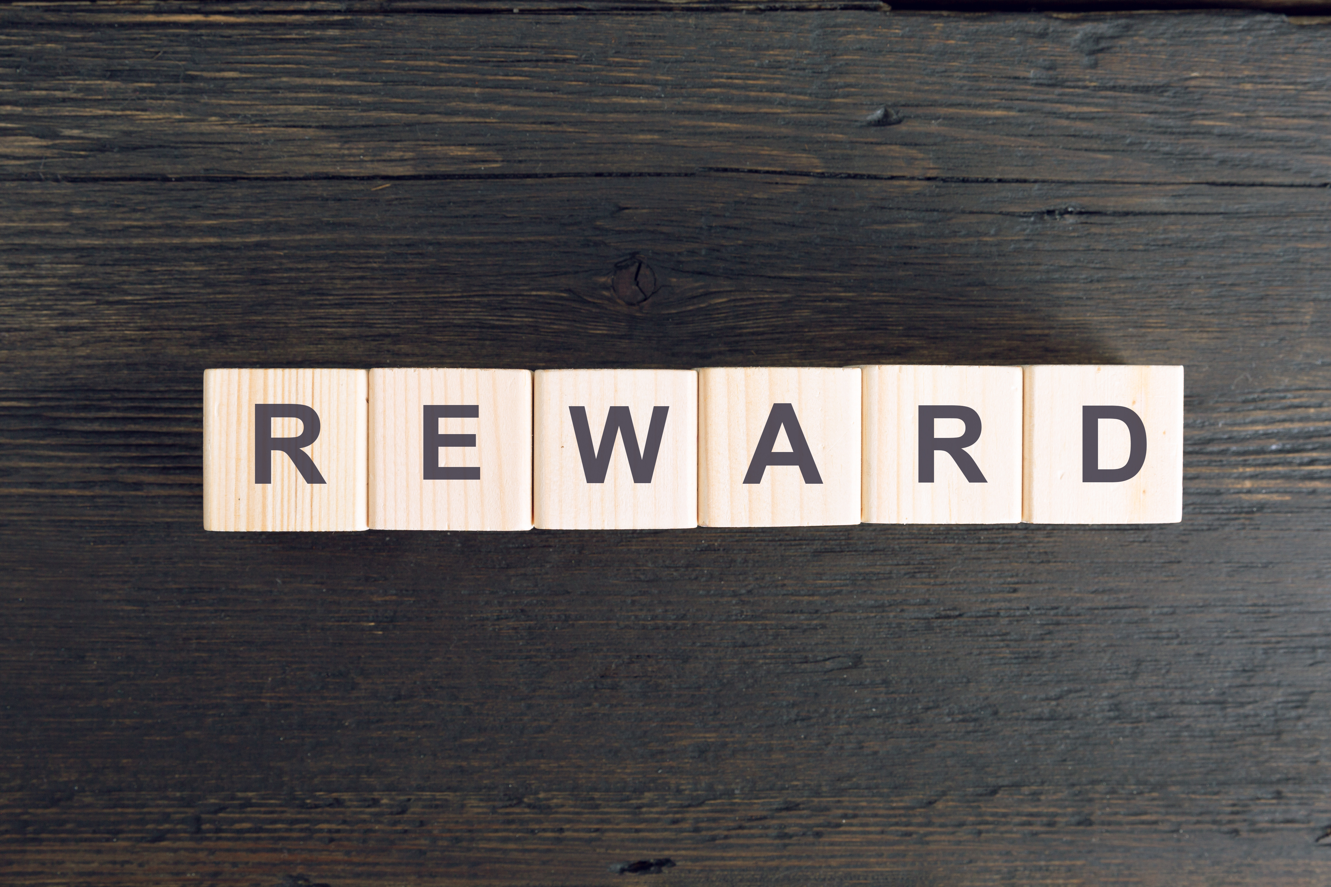 Blocks spelling out the word reward