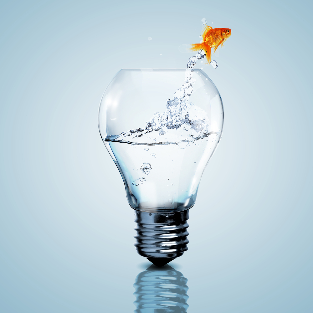 Fish in a light bulb representing new ideas in promotional products